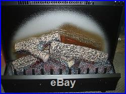 Dimplex 23 Electric Lighted Fireplace Insert Heater